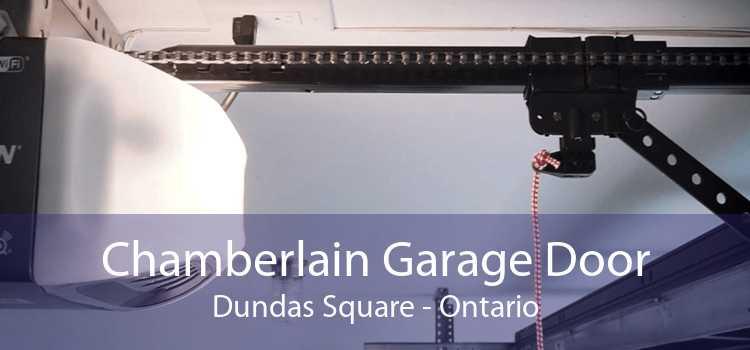 Chamberlain Garage Door Dundas Square - Ontario