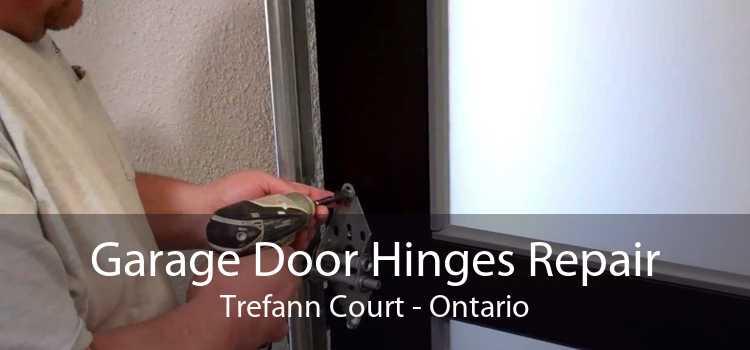 Garage Door Hinges Repair Trefann Court - Ontario