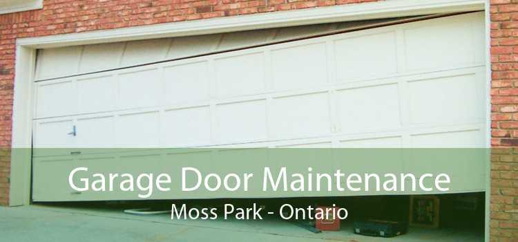 Garage Door Maintenance Moss Park - Ontario