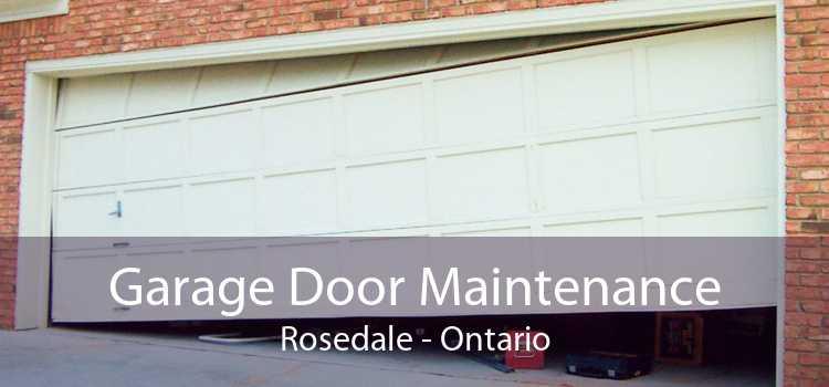 Garage Door Maintenance Rosedale - Ontario