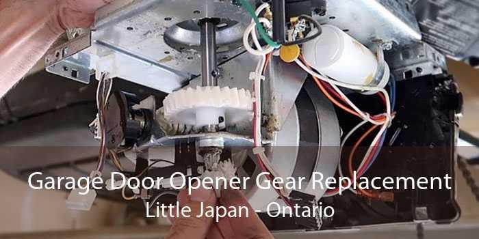 Garage Door Opener Gear Replacement Little Japan - Ontario