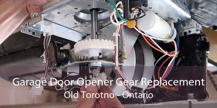 Garage Door Opener Gear Replacement Old Torotno - Ontario