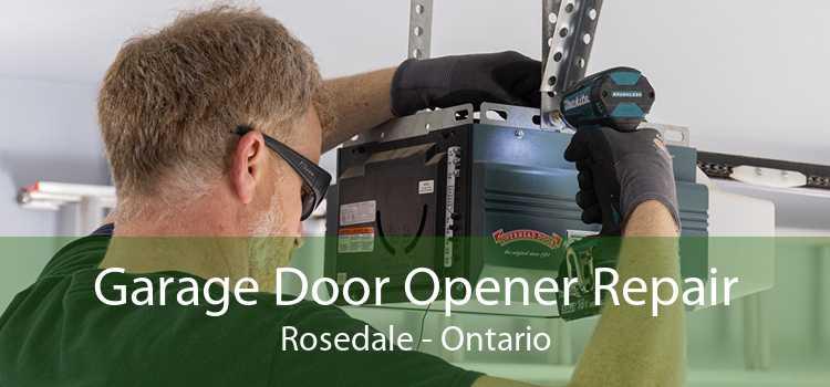 Garage Door Opener Repair Rosedale - Ontario