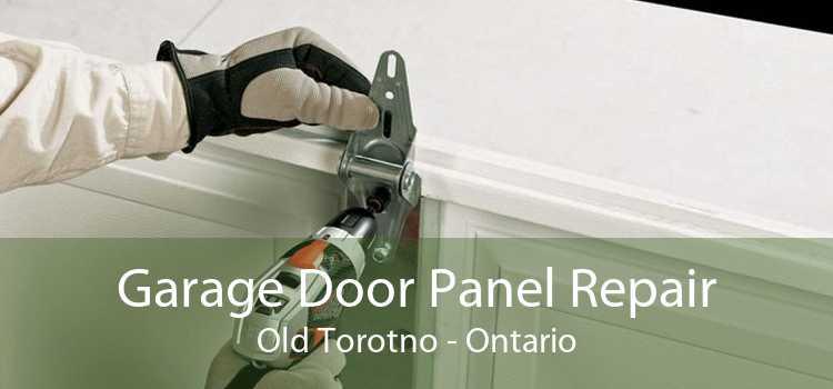 Garage Door Panel Repair Old Torotno - Ontario