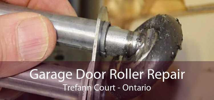 Garage Door Roller Repair Trefann Court - Ontario