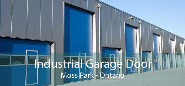 Industrial Garage Door Moss Park - Ontario