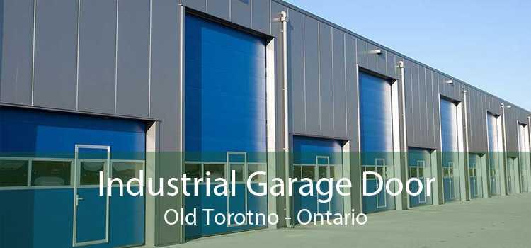 Industrial Garage Door Old Torotno - Ontario