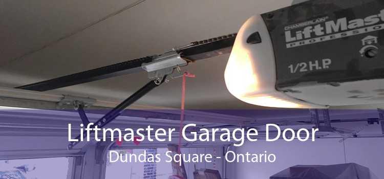 Liftmaster Garage Door Dundas Square - Ontario