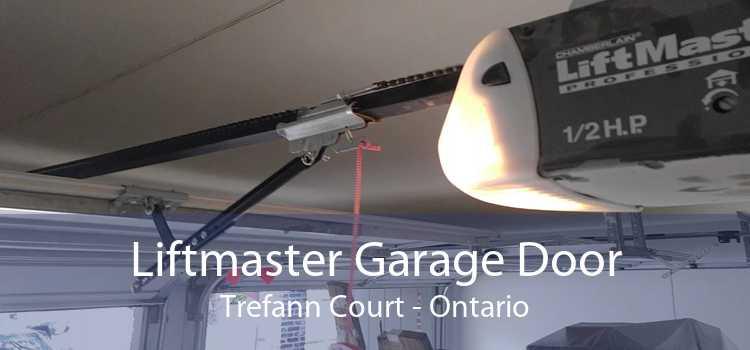 Liftmaster Garage Door Trefann Court - Ontario