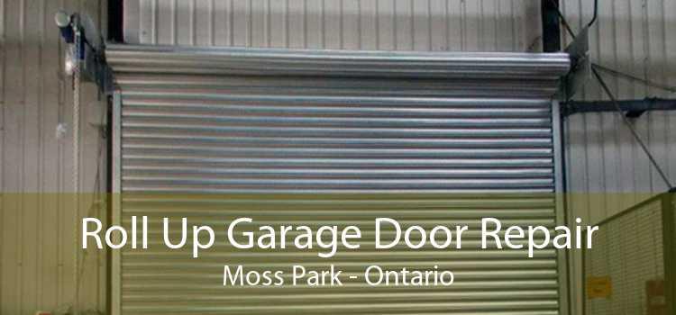 Roll Up Garage Door Repair Moss Park - Ontario